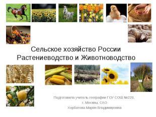 Сельское хозяйство РоссииРастениеводство и Животноводство Подготовила учитель ге
