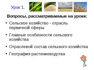 Урок 1.Вопросы, рассматриваемые на уроке:Сельское хозяйство - отрасль первичной