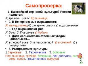 Самопроверка: 1. Важнейшей зерновой культурой России является:А) гречиха Б)овес