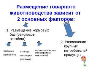 Размещение товарного животноводства зависит от 2 основных факторов: 1. Размещени