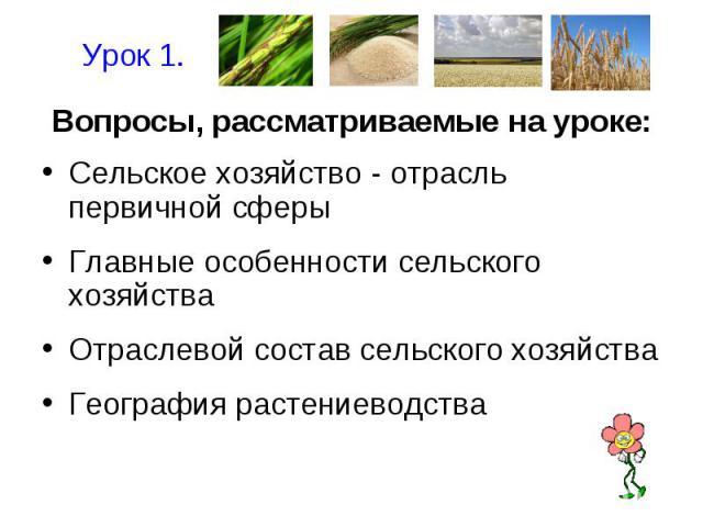 Урок 1.Вопросы, рассматриваемые на уроке:Сельское хозяйство - отрасль первичной сферыГлавные особенности сельского хозяйстваОтраслевой состав сельского хозяйстваГеография растениеводства