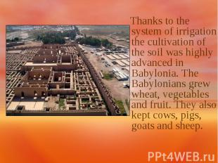 Thanks to the system of irrigation the cultivation of the soil was highly advanc