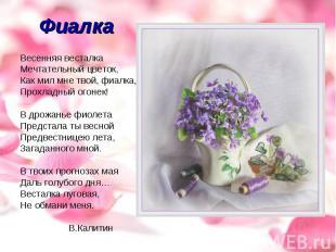Фиалка Весенняя весталкаМечтательный цветок,Как мил мне твой, фиалка,Прохладный