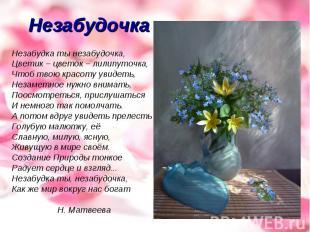 Незабудочка Незабудка ты незабудочка,Цветик – цветок – лилипуточка,Чтоб твою кра