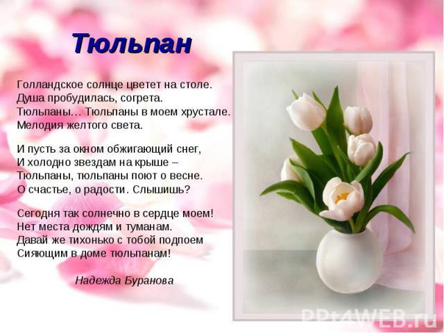 Тюльпан Голландское солнце цветет на столе.Душа пробудилась, согрета.Тюльпаны… Тюльпаны в моем хрустале. Мелодия желтого света. И пусть за окном обжигающий снег, И холодно звездам на крыше – Тюльпаны, тюльпаны поют о весне. О счастье, о радости. Слы…