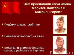Чем прославили свои имена Мелитон Кантария и Михаил Егоров? Подбили фашистский т