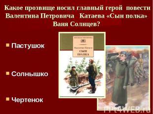Какое прозвище носил главный герой повести Валентина Петровича Катаева «Сын полк