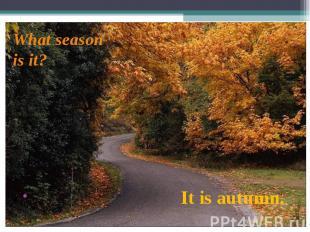 It is autumn. What season is it?