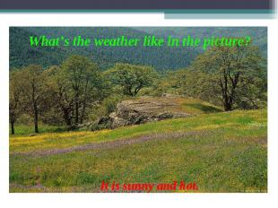 What's the weather like in the picture? It is sunny and hot.