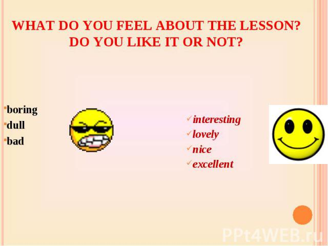 What do you feel about the lesson? Do you like it or not? boring dullbadinterestinglovelyniceexcellent