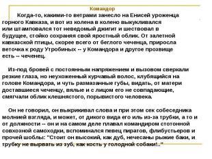 Командор Когда-то, какими-то ветрами занесло на Енисей уроженцагорного Кавказа,