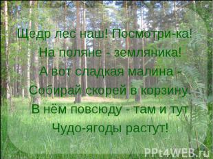 Щедр лес наш! Посмотри-ка!  На поляне - земляника!  А вот сладкая малина -