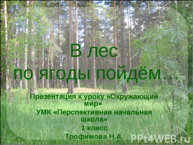 В лес по ягоды пойдём… Презентация к уроку «Окружающий мир» УМК «Перспективная начальная школа»1 классТрофимова Н.А.