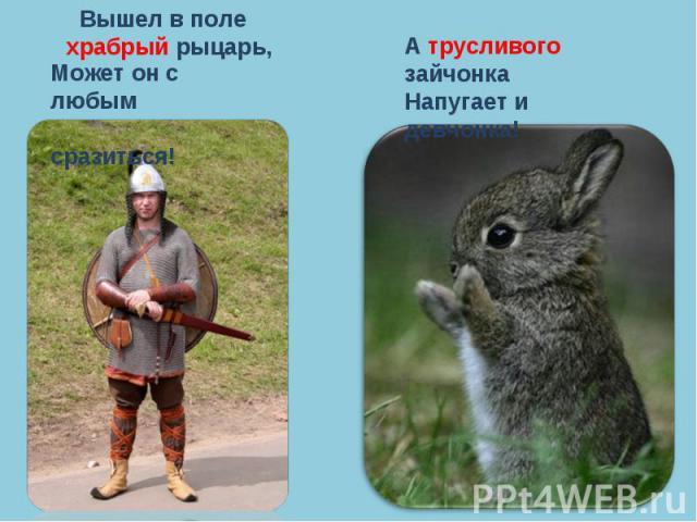 Вышел в поле храбрый рыцарь,Может он с любым сразиться!А трусливого зайчонкаНапугает и девчонка!