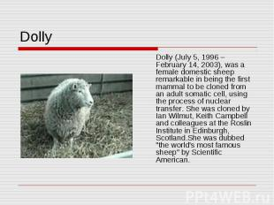 Dolly Dolly (July 5, 1996 – February 14, 2003), was a female domestic sheep rema