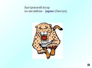 Быстроногий ягуарпо-английски – jaguar (джегуа).