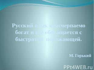 Русский язык неисчерпаемо богат и всё обогащается с быстротой поражающей. Русски