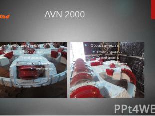 AVN 2000