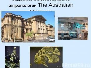 Сиднейский музей истории и антропологии The Australian Museum