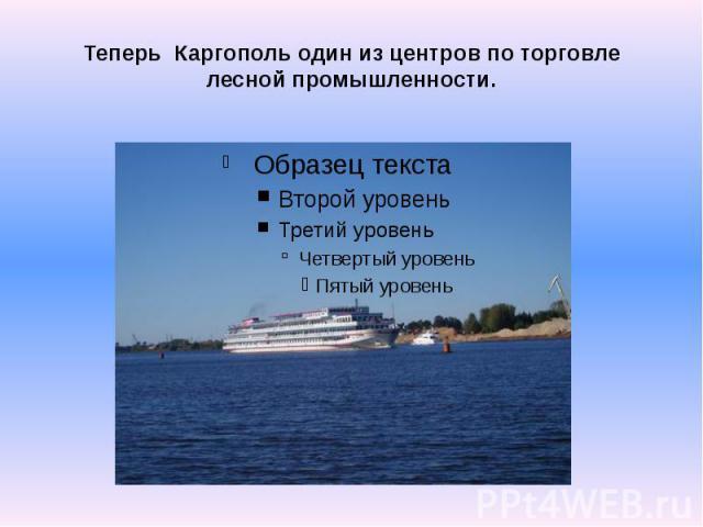 Теперь Каргополь один из центров по торговле лесной промышленности.