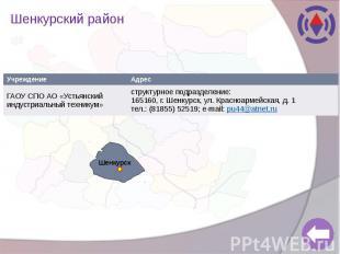 Шенкурский район