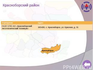 Красноборский район