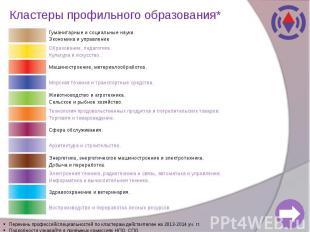 Кластеры профильного образования*