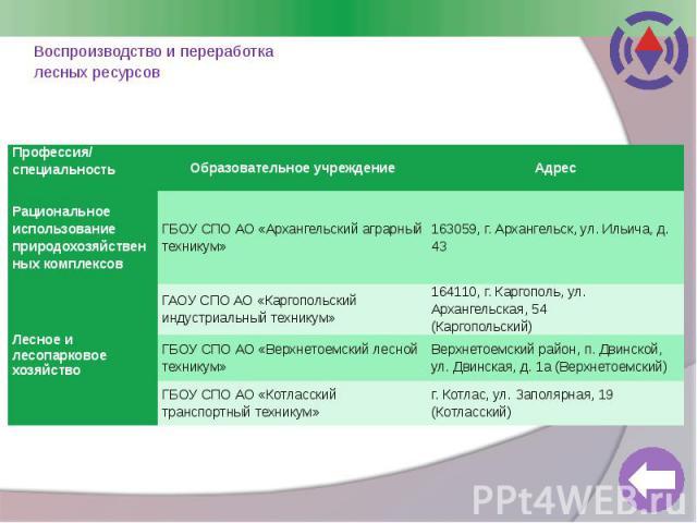 Воспроизводство и переработка лесных ресурсов