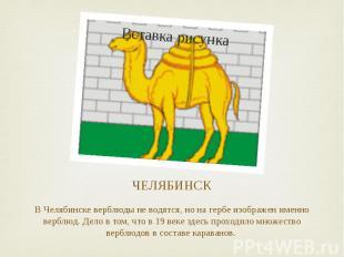 ЧЕЛЯБИНСК В Челябинске верблюды не водятся, но на гербе изображен именно верблюд