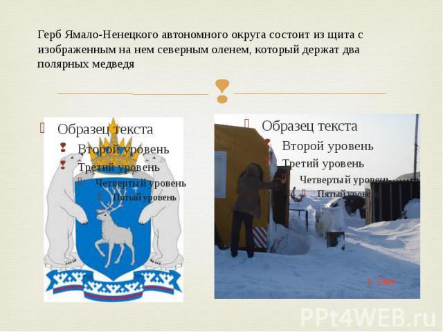 Герб Ямало-Ненецкого автономного округа состоит из щита с изображенным на нем северным оленем, который держат два полярных медведя