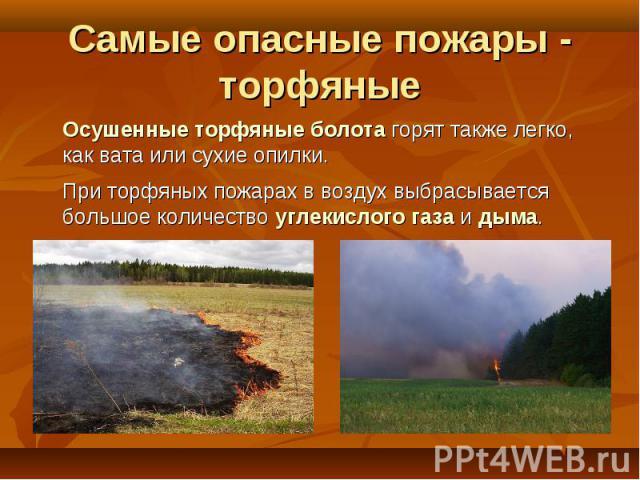 Осушенные торфяные болота горят также легко, как вата или сухие опилки. Осушенные торфяные болота горят также легко, как вата или сухие опилки. При торфяных пожарах в воздух выбрасывается большое количество углекислого газа и дыма.