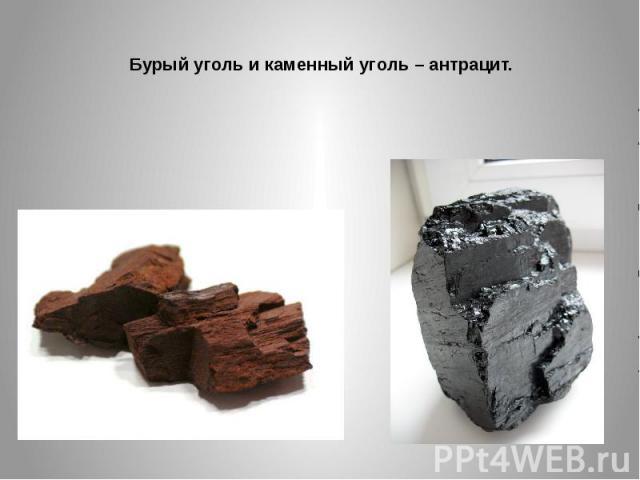 Бурый уголь и каменный уголь – антрацит.
