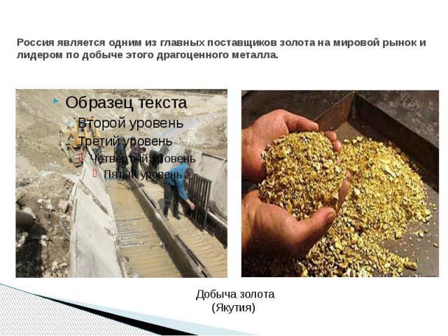 Россия является одним из главных поставщиков золота на мировой рынок и лидером по добыче этого драгоценного металла.