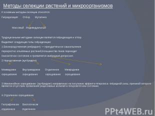 Методы селекции растений и микроорганизмовК основным методам селекции относятся:
