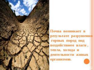 Почва возникает в результате разрушения горных пород под воздействием влаги , те