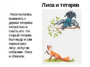 Лиса и тетерев Лиса пыталась выманить с дерева тетерева хитростью и съесть его.