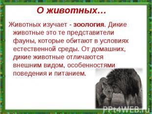 Животных изучает - зоология. Дикие животные это те представители фауны, которые