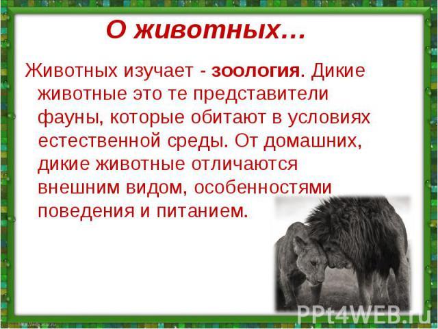 Животных изучает - зоология. Дикие животные это те представители фауны, которые обитают в условиях естественной среды. От домашних, дикие животные отличаются внешним видом, особенностями поведения и питанием.Животных изучает - зоология. Дикие животн…