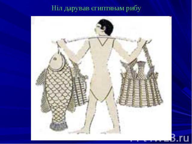 Ніл дарував єгиптянам рибу