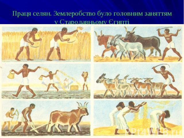 Праця селян. Землеробство було головним заняттям у Стародавньому Єгипті