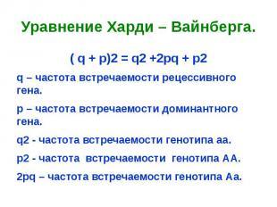 Уравнение Харди – Вайнберга.( q + p)2 = q2 +2pq + p2q – частота встречаемости ре