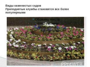 Виды каменистых садов Приподнятые клумбы становятся все более популярными