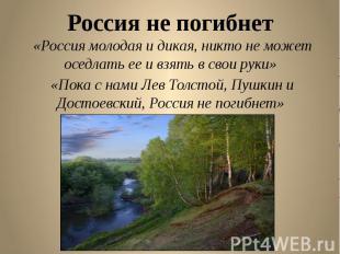 Россия не погибнет «Россия молодая и дикая, никто не может оседлать ее и взять в
