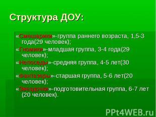 Структура ДОУ: «Смешарики»-группа раннего возраста, 1,5-3 года(29 человек); «Гно