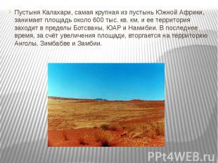 Пустыня Калахари, самая крупная из пустынь Южной Африки, занимает площадь около