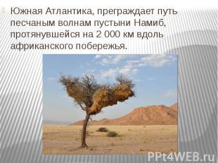 Южная Атлантика, преграждает путь песчаным волнам пустыни Намиб, протянувшейся н