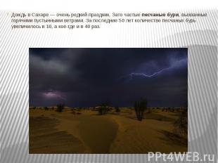 Дождь в Сахаре — очень редкий праздник. Зато частыепесчаные бури, вызванны