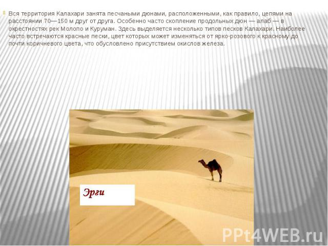 Вся территория Калахари занята песчаными дюнами, расположенными, как правило, цепями на расстоянии 70—150 м друг от друга. Особенно часто скопление продольных дюн — алаб — в окрестностях рек Молопо и Куруман. Здесь выделяется несколько типов песков …