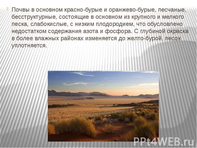Почвы в основном красно-бурые и оранжево-бурые, песчаные, бесструктурные, состоящие в основном из крупного и мелкого песка, слабокислые, с низким плодородием, что обусловлено недостатком содержания азота и фосфора. С глубиной окраска в более влажных…