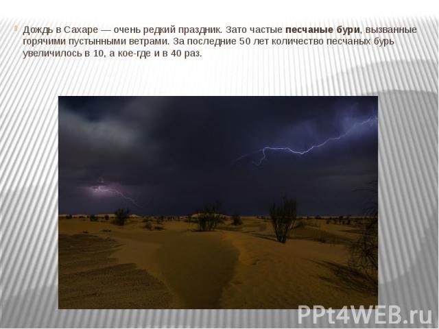 Дождь в Сахаре — очень редкий праздник. Зато частыепесчаные бури, вызванные горячими пустынными ветрами. За последние 50 лет количество песчаных бурь увеличилось в 10, а кое-где и в 40 раз.